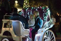 Raber Carriage (Seats 6 Adults) Highland Park