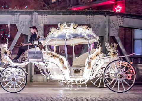 Cinderella Carriage (Seats 6 passengers) Highland Park