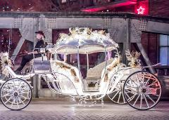Valentines Carriage Ride Through Downtown Houston (Pickup at the Downtown Aquarium)