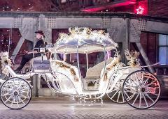 Valentines Carriage Ride Through Downtown Oklahoma City (Pickup near Spaghetti Warehouse Downtown OKC)