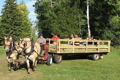 Wagon Ride (Seats 10 Adults) Ozark Village