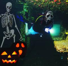 Halloween Night Ex-HMAS Brisbane Single Dive