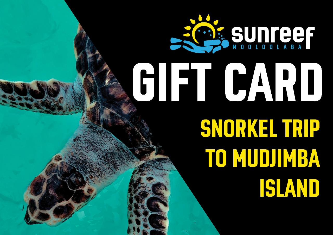Gift Card Snorkel Mudjimba Island