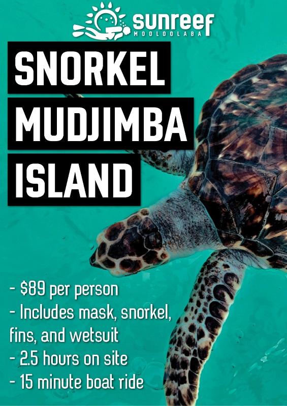 Mudjimba Island Snorkeling Trip