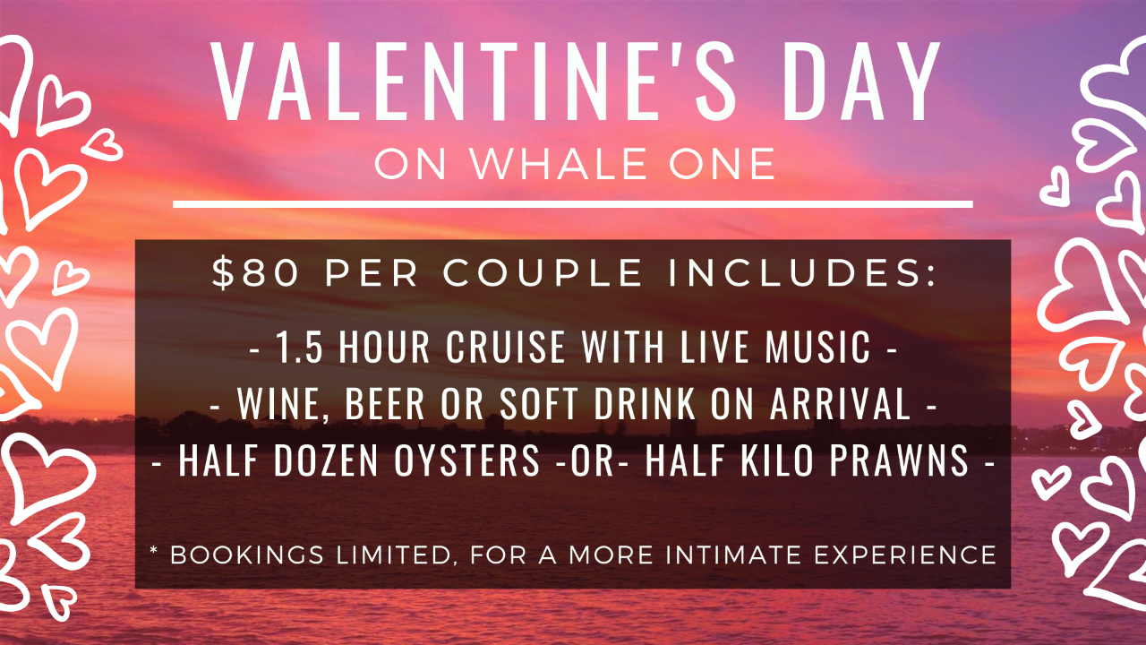 Valentine's Day Sunset Cruise on Whale One
