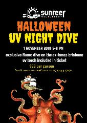 Halloween Night Ex-HMAS Brisbane Single Dive