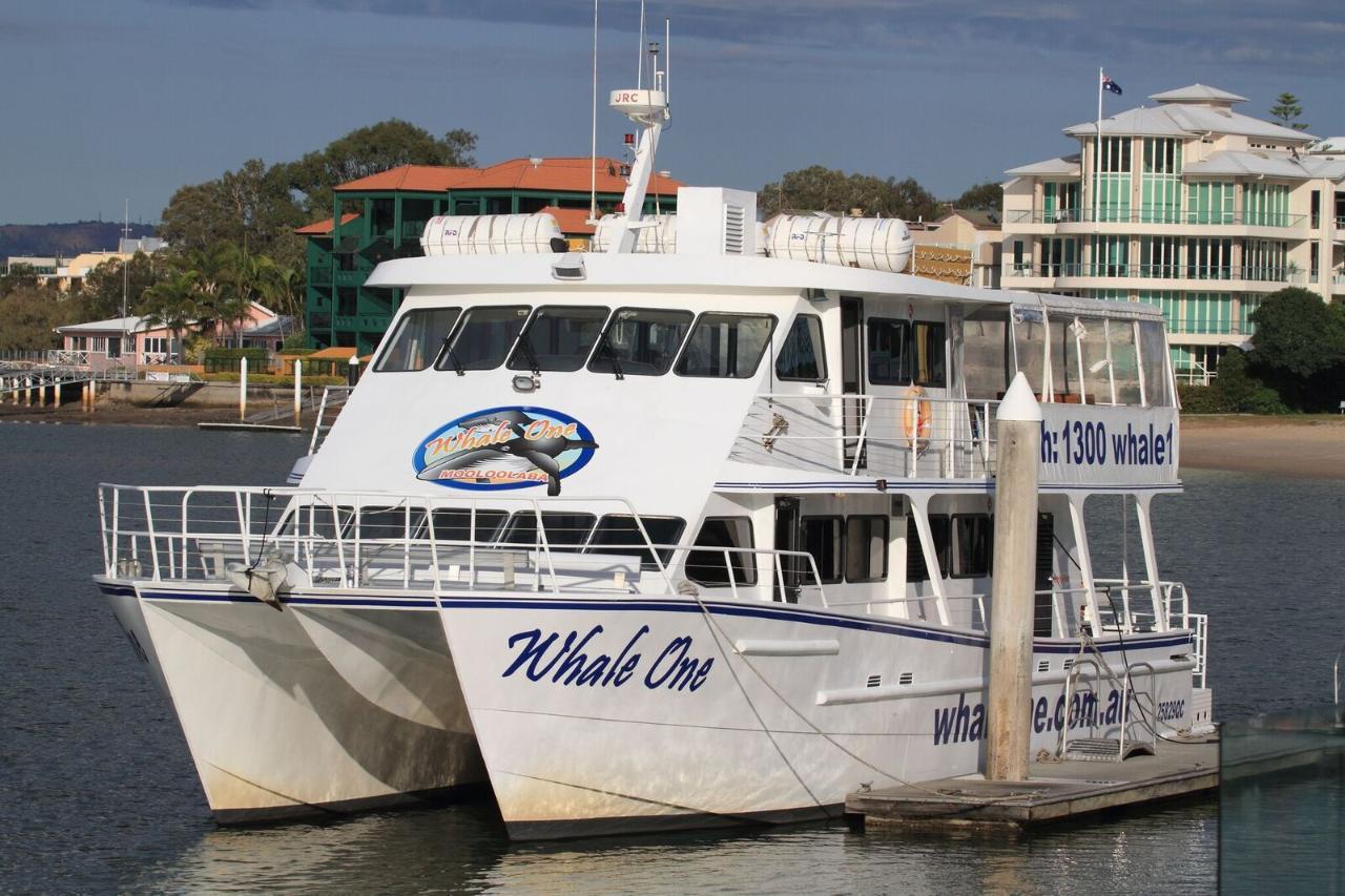 Shoreline Cruise (1pm)