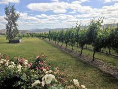 Coal River Valley Wine Tour