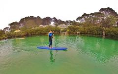 Private Stand Up Paddle Board Lesson (Broulee)