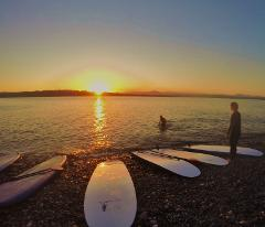 SUP (Stand Up Paddle) Board Day hire HARD or SOFT BOARD (Narooma)