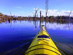 Murray River Adventures, Cohuna VIC - Single Kayak Rental