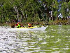 Murray River Adventures, Cohuna VIC - Double Kayak / Canoe Rental