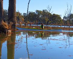 Murray River Adventures, Cohuna VIC - Single Kayak Rental