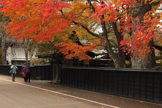 Autumn - Oct 27 - Nov 5, 2020