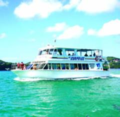 Port Stephens Tours - Large luxury coach