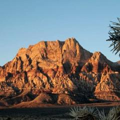 RED ROCK CANYON PRIVATE TOUR (4 Hours Tour)