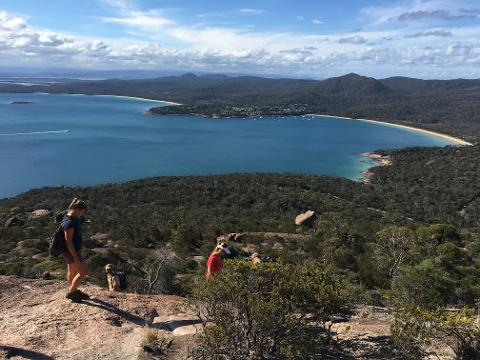 5 Day East Coast Safari Tour – Launceston to Hobart Tasmania Australia