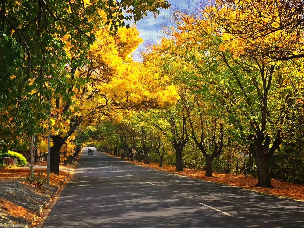 Adelaide Hills & Hahndorf Hideaway