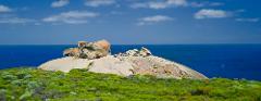 Photography Tour - Kangaroo Isalnd