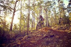 Mountain Bike Hire - Premium