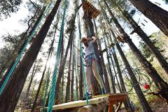 Tree Ropes Adventure with BONUS hour free