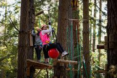 Happy Hour - Tree Ropes Adventures