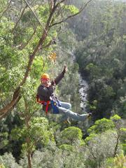 Zip Line Tour - Day