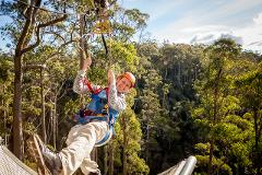Adrenaline Package - Zipline, Segway + Tree Ropes