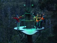 Zipline Adventures - Twilight