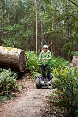 Adrenaline Package - Zipline, Segway + Mountain Bikes