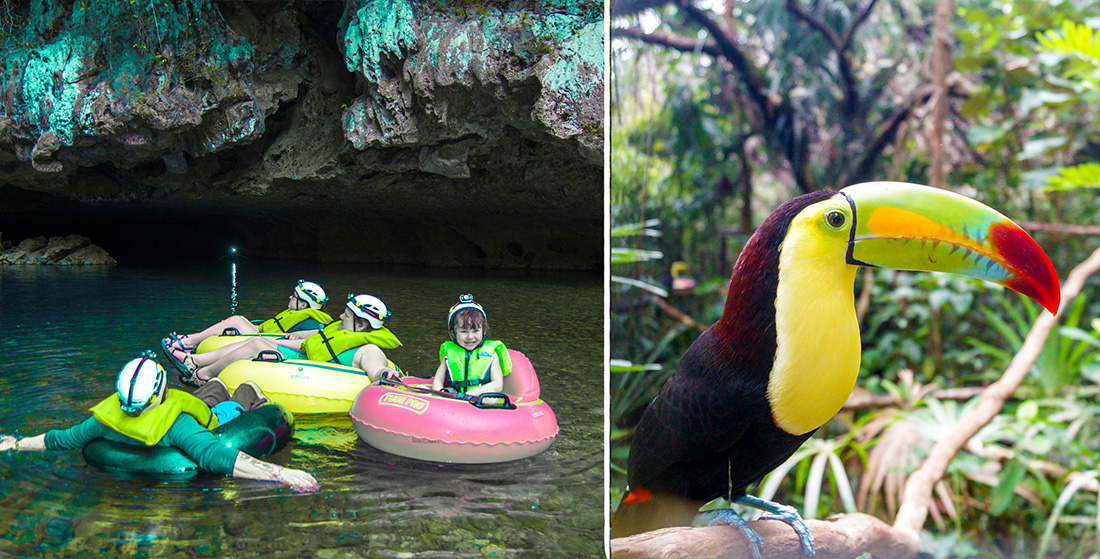 Cave Tubing & Belize Zoo Combo (7 - 9 pax)