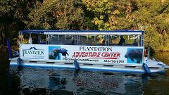 Gift Certificate Snorkel with Manatees Tour OP