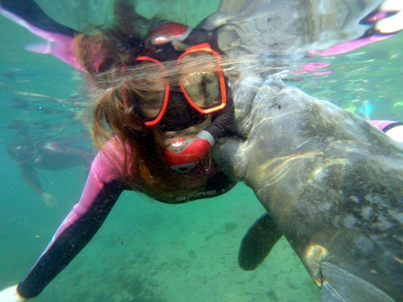 Snorkel with Manatees Tour On Plantation's Our Pleasure