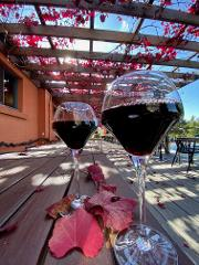 1 day Hunter Valley - PACKAGE
