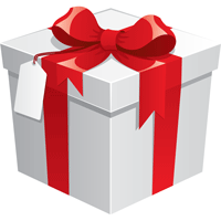 Gift Certificate Half Day your choice - $148