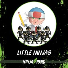 7 -12 yrs Little Ninjas Sessions