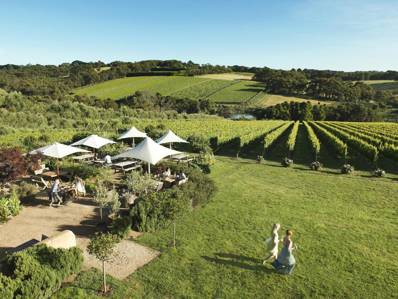Mornington Peninsula Premium Wine & Food Day Tour