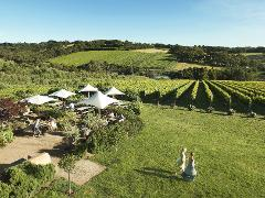 Mornington Peninsula Premium Wine & Food Day Tour