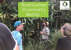 Bush Tucker Walk