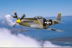 P-51 Mustang Silver