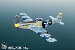 P-51 Mustang Adventure