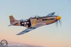 P-51 Mustang Bronze