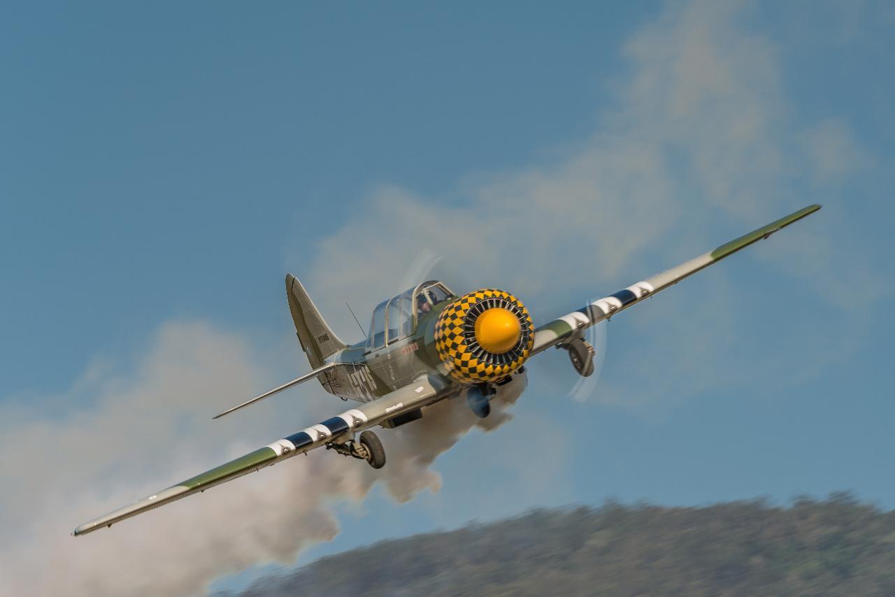 Yak-52 Bronze