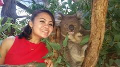 Koala-Roo