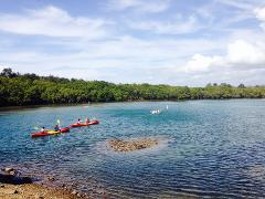 KAYAK ADVENTURE: Cabarita Lake To Kingscliff (Guided)