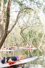 MINDFULNESS IN THE MANGROVES