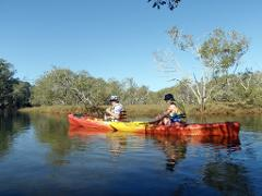 KAYAK TOUR ON CUDGEN CREEK