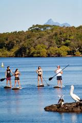 STANDUP PADDLE BOARD LESSON (SUP)