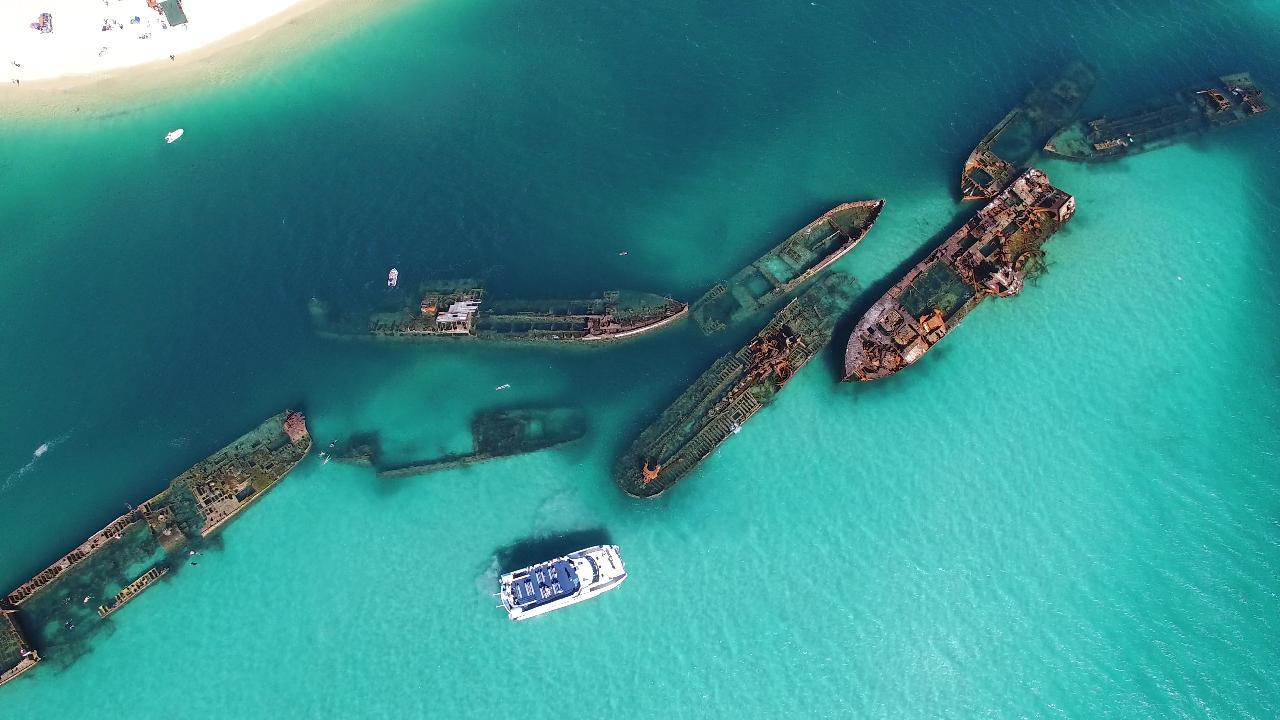 Dolphin & Tangalooma Wrecks Cruise