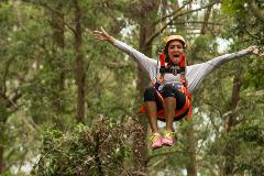 Sydney's Surf 'N' Zipline Adventure Tour
